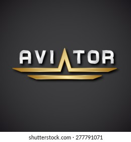 EPS10 vector aircraft aviator inscription icon