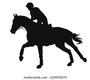 Equestrian event. Silhouette of a rider cantering on a horse.