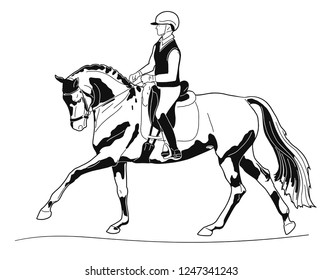 Equestrian sport. Dressage rider and horse performing canter.