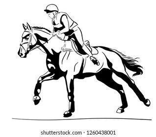 Equestrian sport, eventing. Rider cantering on a horse.
