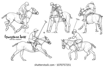 equestrian sport. Horse polo player in action drawing vector set.