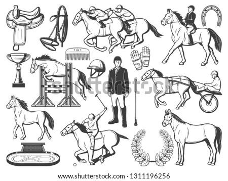 Equestrian Sport Horse Polo Racing Equipment Stock Vector Royalty