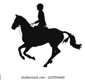 Equestrian sport. Silhouette of a rider cantering on a horse.