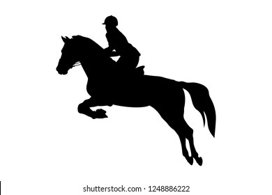 equestrian sport woman rider horse jumping competition