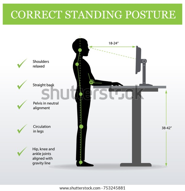 Ergonomic Correct Standing Posture On Height Stock Vector ...
