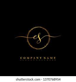 ES Initial luxury handwriting logo vector