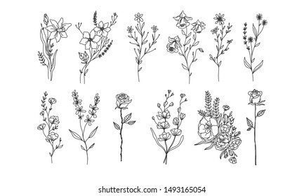 et of floral illustration elements, flower plant lineart illustration