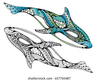 Ethnic animal doodle detail pattern - killer whale zentangle illustration. Hand drawn Orcinus orca isolated on white background for adult anti-stress coloring book pages