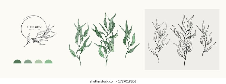 Eucalyptus blue gum logo and branch. Hand drawn wedding herb, plant and monogram with elegant leaves for invitation save the date card design. Botanical rustic trendy greenery vector illustration