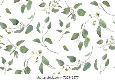 Eucalyptus different tree, foliage natural branches with green leaves seeds tropical seamless pattern, watercolor style. Vector decorative beautiful cute elegant illustration isolated white background