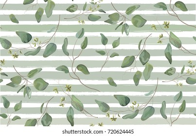 Eucalyptus different tree, foliage natural branches with green leaves seeds tropical seamless pattern watercolor style. Vector decorative beautiful elegant illustration  light blue stripped background