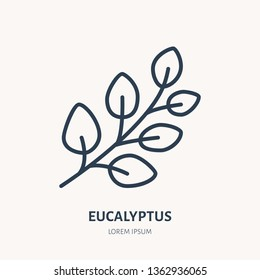 Eucalyptus flat line icon. Medicinal plant gum-tree vector illustration. Thin sign for herbal medicine, essential oil logo.