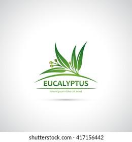 Eucalyptus leaves and fruit symbol - vector illustration