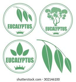Eucalyptus logo. Isolated eucalyptus on white background
