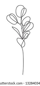 Eucalyptus silver dollar branch continuous line drawing. One line minimalism art