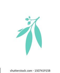 Eucalyptus tree. Logo. Eucalyptus branch on white background. Gum leaf