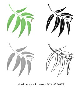 Eucalyptus vector icon in cartoon style for web