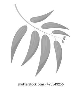 Eucalyptus vector icon in monochrome style for web