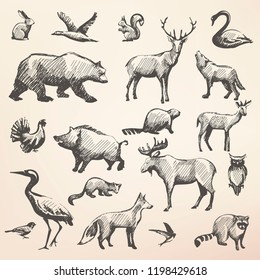 european forrest wild animals collection of stylized vector hand draw silhouettes