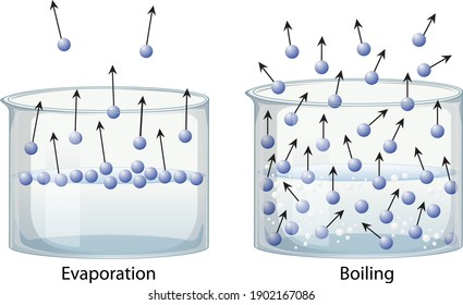 Evaporation and boiling point of liquids, vector illustration, educational explanation diagram