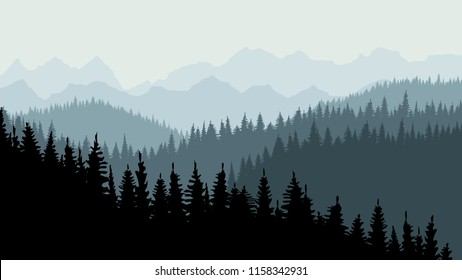 Evening or morning forest of coniferous spruce trees at dusk. Calm background, template for design. 10 eps