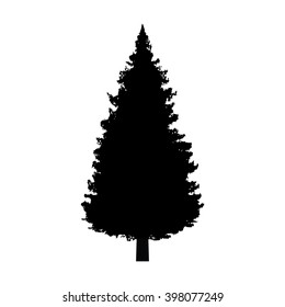 Evergreen conifer / pine tree flat vector icon for apps and websites