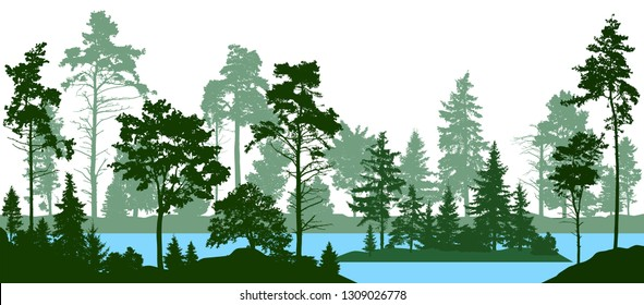 Evergreen coniferous forest with pines, fir trees,  christmas tree, cedar, Scotch fir. Forest silhouette trees. Lake river vector. (Every tree isolated, separate from each other, free-standing)