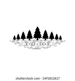 evergreen pine tree vector design illustration