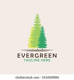 Evergreen, Pines, Spruce, Cedar  trees logo  design vector