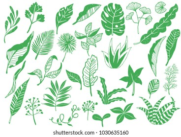 Every kind of green leaves Icons