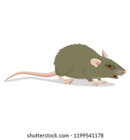 Evil Cartoon Rat Vector Clip Art Illustration. Angry Rat Sign Isolated On White Background. Harmful Rodent. House Mouse Vector Drawing.