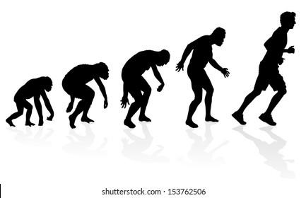 Evolution of the Runner