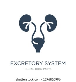 excretory system icon vector on white background, excretory system trendy filled icons from Human body parts collection, excretory system vector illustration