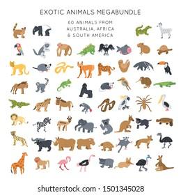 Exotic animals clipart vector illustrations set. Elegant vector bundle. Kids design posters collection. Drawing in scandinavian style. Handwritten lettering.