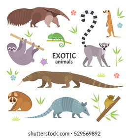 Exotic animals. Vector illustration with flat animals, including anteater, Ring-tailed lemur, lemur loris, sloth, Komodo monitor lizard, armadillo, meerkat, tarsier, isolated on white.