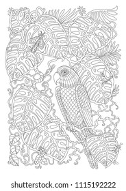 Exotic bird, fantastic tropical liana, branch, foliage, insects. Contour thin line. Black and white vector fantasy stylized jungle parrot on monstera leaves. T-shirt print. Adults Coloring book page