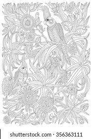 Exotic birds with fantastic flowers, branches, leaves. Black and white contour thin line. Vector decorative fantasy stylized parrot silhouette in the jungle. T-shirt print. Adults coloring book page