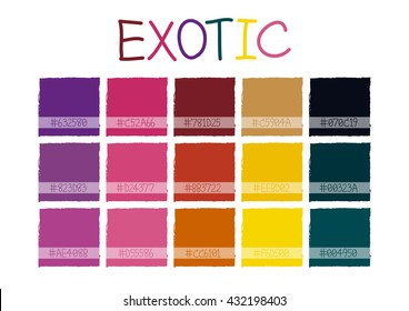 Exotic Color Tone with Code Vector Illustration