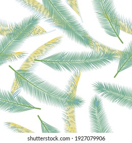 Exotic feather plumage vector seamless pattern. Cute fashion print. Airy natural feather plumage wallpaper seamless ornament.
