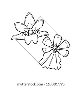 Exotic flower in geometric background. Simple icon composition. Vector illustration. Line work. Modern monochrome logotype. Nature representation.