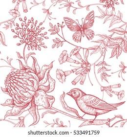 Bird Drawing Images Stock Photos Vectors Shutterstock
