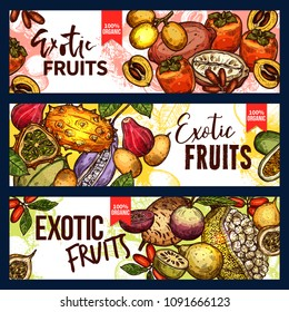 Exotic fruit and tropical berry sketch banner set. Fresh persimmon, kiwano and granadilla, jackfruit, akebia and miracle fruit, marula and cupuassu for exotic fruit dessert or drink menu design