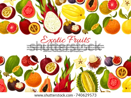 exotic fruits poster banner template tropic のベクター画像素材