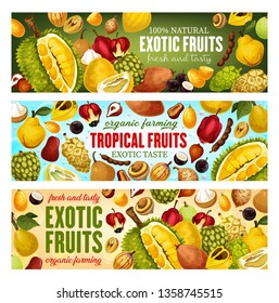 Exotic fruits and tropical berries vector banners design. Asian durian, pomelo and kumquat, sweetsop, quince and santol, tamarind, marula and ackee, morinda, salak and jabuticaba. Food and drink theme