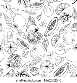 Exotic fruits vector seamless pattern on a white background. Sketch in the drawn style of pomegranates, mangosteen, papaya. Design for wallpaper, textile, wrapping paper, food packaging, coloring.