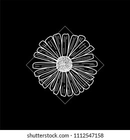 Exotic and modern daisy flower icon. Vector illustration in black background. Digital art. Icon set. Simple line work. Nature sketch. Botanical collection.