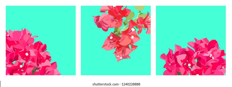 Exotic pastel tropical Bougainvillea flower, sweet retro vintage nostalgic template