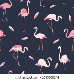 Exotic pink flamingos flock flamboyance colony and feather seamless pattern on dark blue navy background. Wading bird species realistic detailed vector design illustration.