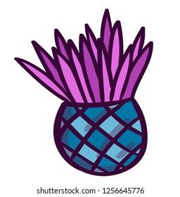 Exotic plant. Hand made illustration of cbleu flower. Tropical isolated flovers. Botanical illustration.