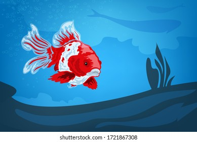 Exotic red gold multi-colored fish swims in the depths of the ocean. Vector drawing illustration see bright colors.